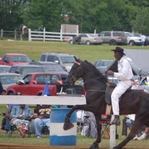 Greenfield Farm: Site of the SC Black Cowboy Festival - The Green